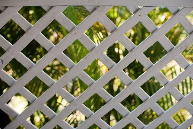 wooden garden lattice