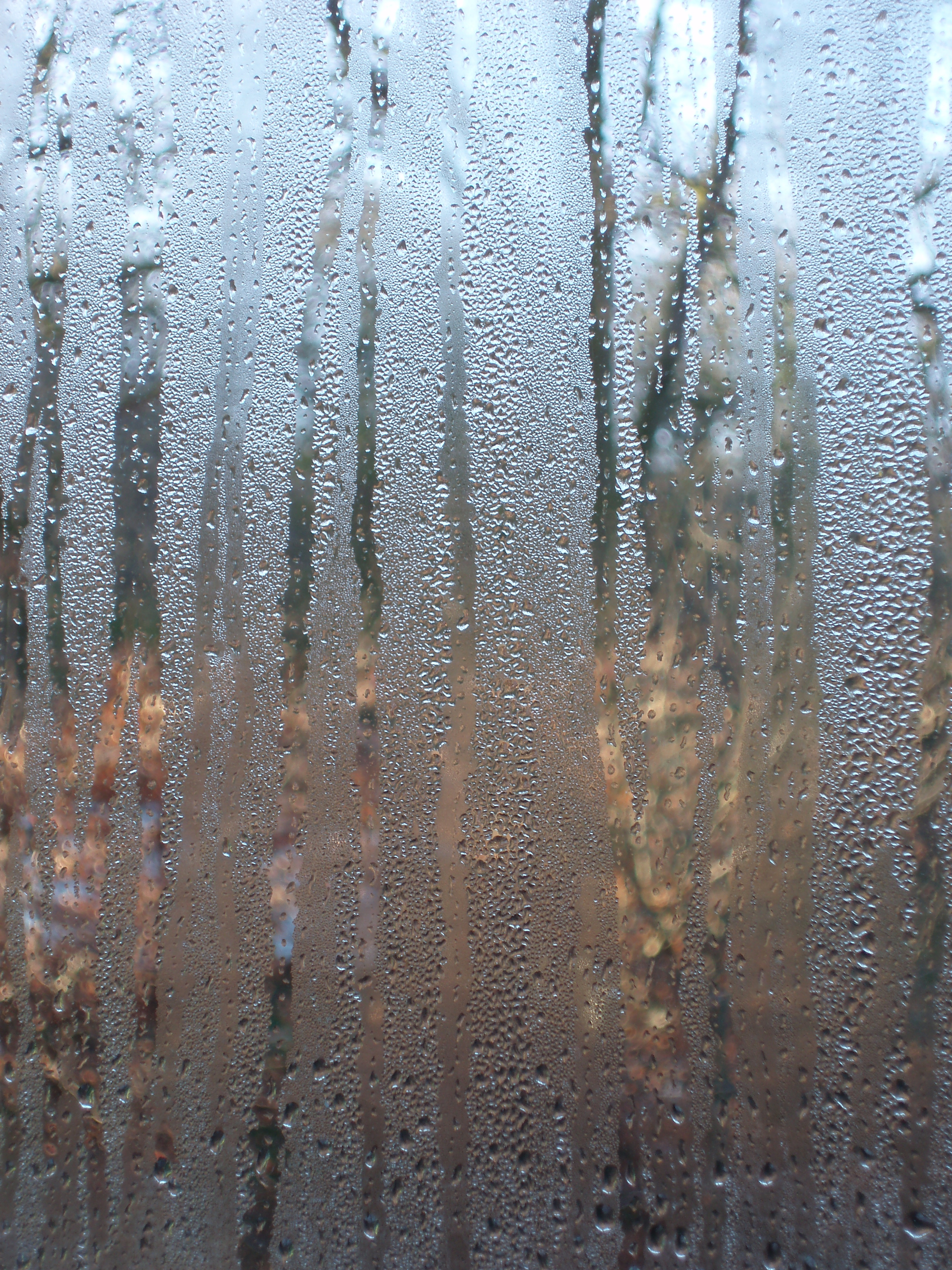 Window Condensation Free Backgrounds And Textures